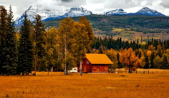 home in order this fall