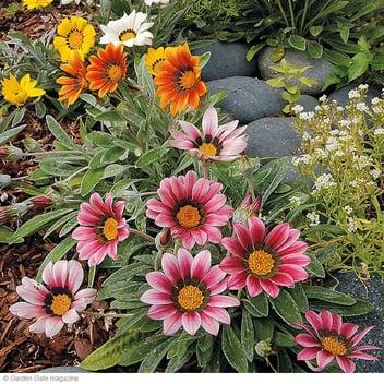 gardengatenotes.com